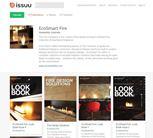 biokaminad EcoSmart Fire online kataloogid 2014