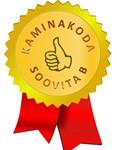Kaminakoda_soovitab_parima_kamina